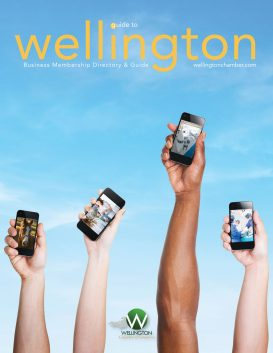 Guide to Wellington 2017